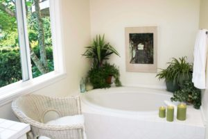 plante salle de bain decoration idee