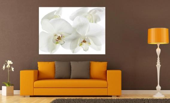 tableau fleur