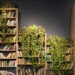 Bibliothèque avec plantes grimpantes d'intérieur